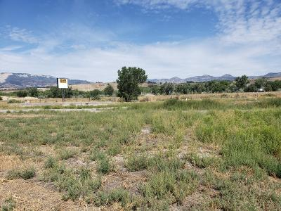 Rifle Commercial Lots & Land For Sale: 2420 Airport Road