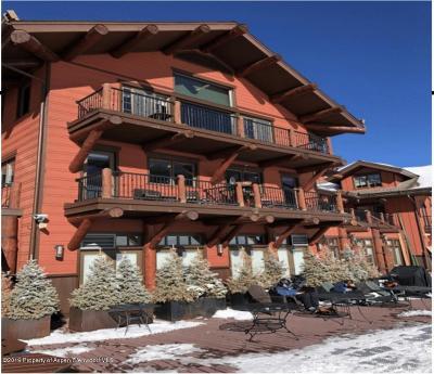 Aspen Commercial For Sale: 133 Prospector Road #19 Units