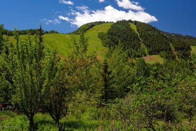 Aspen Residential Lots & Land For Sale: 25 Glen Eagles Drive