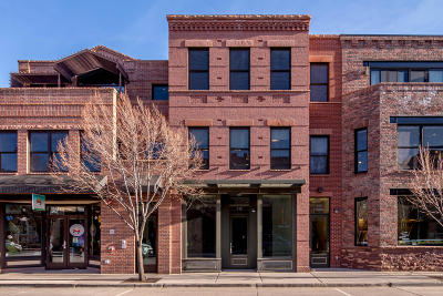 Carbondale Commercial For Sale: 319 Main Street