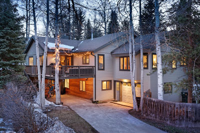 Aspen Single Family Home For Sale: 1360 Mountain View Drive
