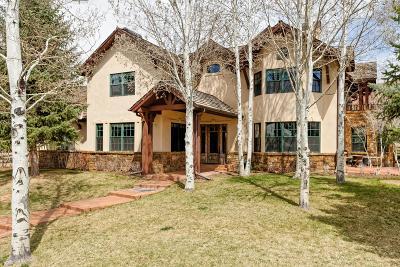 Carbondale Single Family Home For Sale: 62 River Park Lane