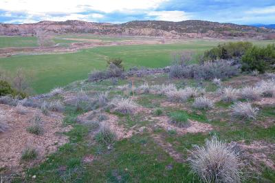 Rifle Residential Lots & Land For Sale: Tbd Mesa Drive