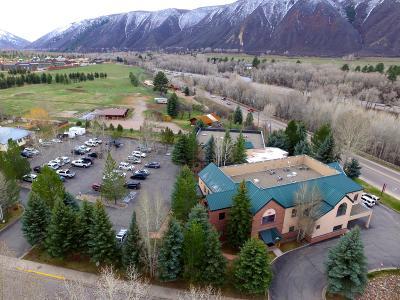 Basalt Commercial For Sale: 100 Elk Run Drive #220