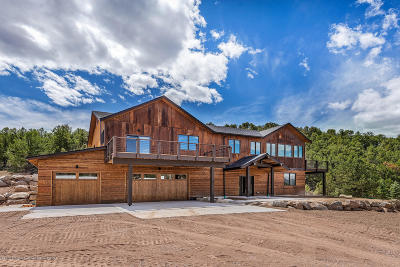 Glenwood Springs Single Family Home For Sale: 814 Co Rd 110