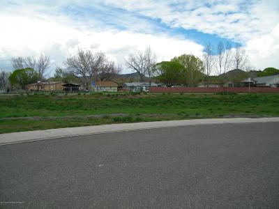 Silt Commercial Lots & Land For Sale: 1805 Silver Spur