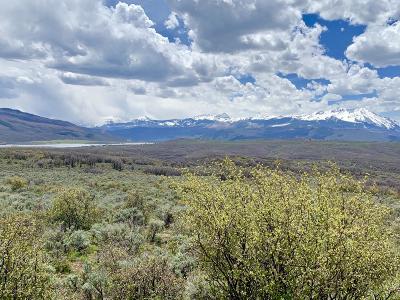 Carbondale Residential Lots & Land For Sale: Lot 3 Ten Peaks Mesa Road