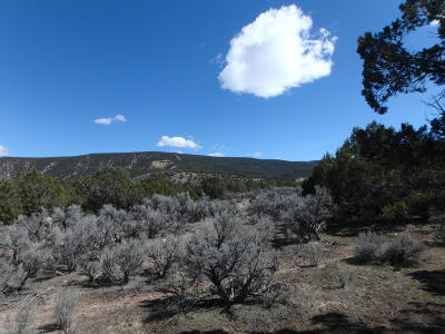 Rifle Residential Lots & Land For Sale: Tbd Porcupine Creek Rd