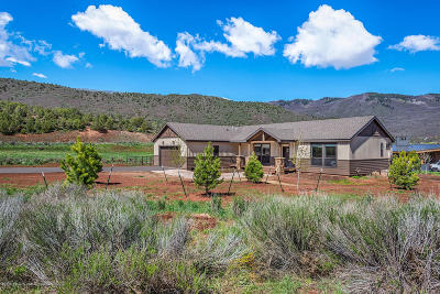 Glenwood Springs Single Family Home For Sale: 499 Hidden Valley Drive