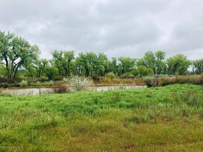Silt Commercial Lots & Land For Sale: Tbd County Road 311