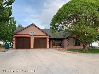 Rifle Single Family Home For Sale: 26 Native Springs Drive