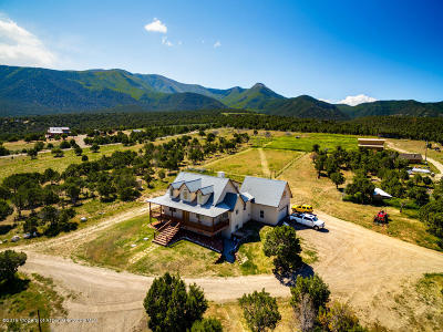 Battlement Mesa, Parachute Single Family Home For Sale: 3100 County Road 306