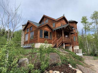 Glenwood Springs Single Family Home For Sale: 434 Foster Ridge Road