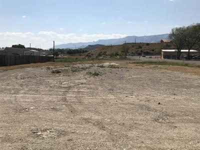 Rifle Commercial Lots & Land For Sale: 235 E 21st Street