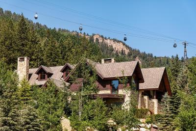 Aspen Single Family Home For Sale: 1011 Ute Avenue