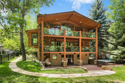 Aspen Single Family Home For Sale: 817 W North Street