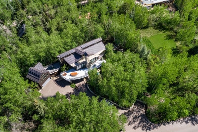 Aspen, Snowmass Single Family Home For Sale: 203 Roaring Fork Drive #Lots 3 &
