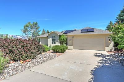 Battlement Mesa, Parachute Single Family Home For Sale: 223 Lodge Pole Circle