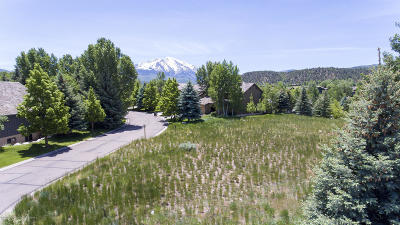 Carbondale Residential Lots & Land For Sale: 488 Settlement Lane