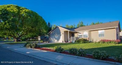 Silt Single Family Home For Sale: 916 Redtail Lane