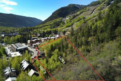 Aspen Residential Lots & Land For Sale: 700 & 701 S Garmisch Street