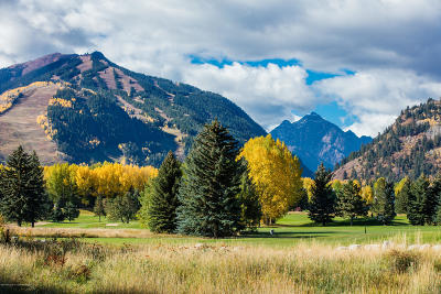 Aspen Residential Lots & Land For Sale: 1501 Silver King Drive