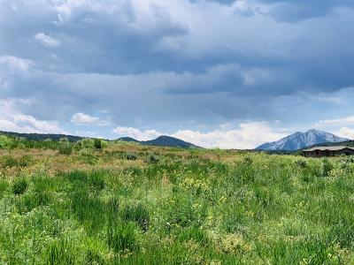 Glenwood Springs Residential Lots & Land For Sale: 46 High Point Drive