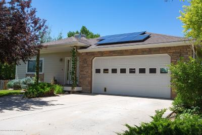 Silt Single Family Home For Sale: 125 S Golden Drive