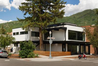 Aspen Commercial For Sale: 602 E Hyman Avenue