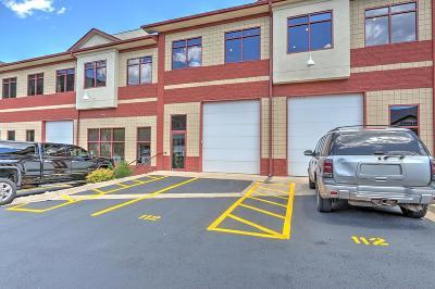 Glenwood Springs Commercial For Sale: 2550 Highway 82 #B112