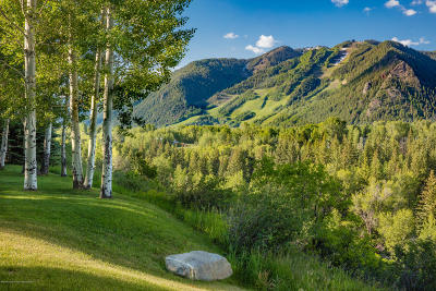 Aspen Residential Lots & Land For Sale: 838 Willoughby Way