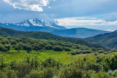 Snowmass Farm & Ranch For Sale: 415 Rural Mountain Wy Road