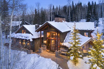 Snowmass Single Family Home For Sale: 1400 Wood Road