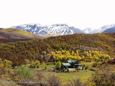 Snowmass Farm & Ranch For Sale: 981 Mesa Road Road