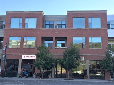 Basalt Condo/Townhouse For Sale: 361 Robinson Street #322