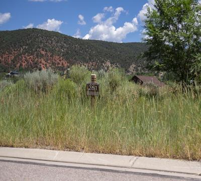 Glenwood Springs Residential Lots & Land For Sale: 107 River Vista Drive