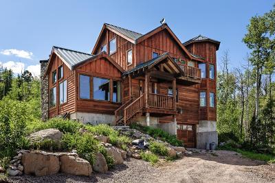 Glenwood Springs Single Family Home For Sale: 434 Foster Ridge Road