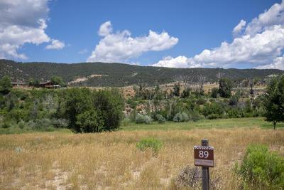 Glenwood Springs Residential Lots & Land For Sale: 224 River Bank Lane