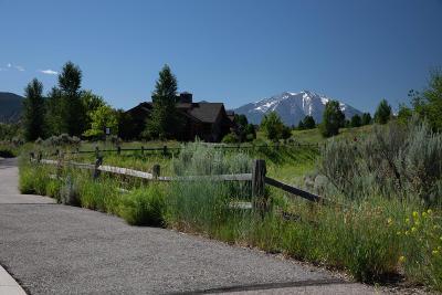 Glenwood Springs Residential Lots & Land For Sale: 0255 Blue Heron Drive