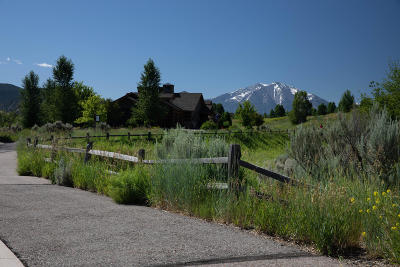 Glenwood Springs Residential Lots & Land For Sale: 1411 River Bend Way