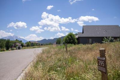Glenwood Springs Residential Lots & Land For Sale: 1435 River Bend Way