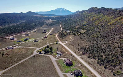 Glenwood Springs Residential Lots & Land For Sale: 671 Dry Park Road