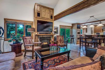 Basalt Condo/Townhouse For Sale: 50 Silverado Drive