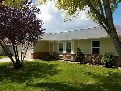 Silt Single Family Home For Sale: 246 S Golden Drive