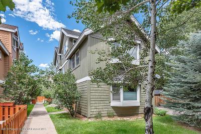 Basalt Condo/Townhouse For Sale: 336 Alexander Lane