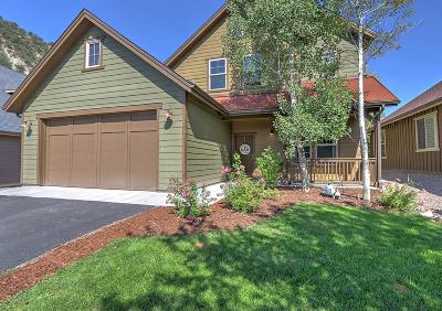 Glenwood Springs Single Family Home For Sale: 244 Red Bluff Vista
