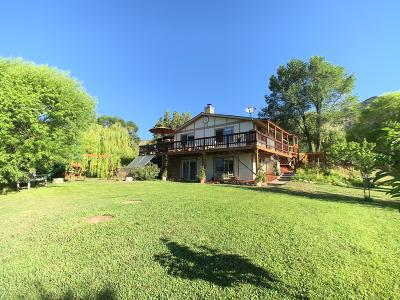 Silt Single Family Home For Sale: 2056 Odin Drive
