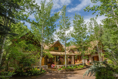 Aspen Single Family Home For Sale: 904 Willoughby Way