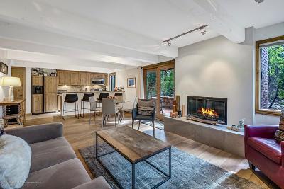 Aspen Condo/Townhouse For Sale: 1034 E Cooper Avenue #29