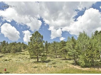 Estes Park Residential Lots & Land For Sale: Shadow Mountain Ct